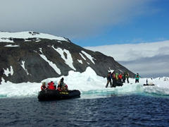 The current changes rapidly near Paulet Island. One minute our fellow zodiac cruisers were blissful and the next, their zodiac was crushed up against some fast flowing ice. Here we watch a rescue operation to free the trapped zodiac