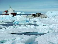 The Polar Star anchored near Paulet Island