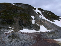 Cuverville Island is a dark, rocky island lying in the Errera Channel. It is home to a large gentoo penguin colony
