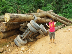 """Uh oh!"", Becky denies all responsibility at the scene of this logging truck rollover; Congo"