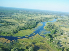 The 1300 KM long Okavango River originates in Angola before flowing south towards Namibia and then Botswana, where it forms a maze of lagoons, channels and islands