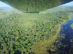 We enjoyed our 45 minute Okavango Delta flight as we enjoyed getting a different perspective on how vast the delta truly is