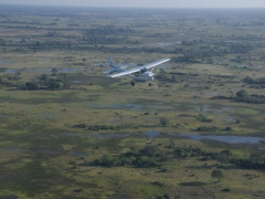 A flight over the Okavango Delta is a must!