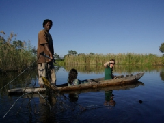 A poler shows us his fish for dinner; Okavango Delta