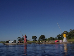 The Okavango Delta polers live in the delta and are intimately familiar with the nooks and crannies of the labyrinth waterways
