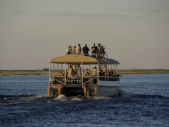 Typical Chobe River transport