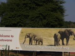 "What a cool billboard for Botswana, advising motorists that elephants have the ""Right of Way""!"