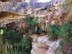 Becky stands on a ledge overlooking a guelta near Tiguelguemine
