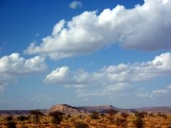 A beautiful rocky plateau amidst the surprising greenery of the Sahara; Tiguelguemine