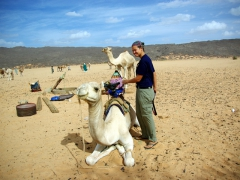 Becky checks out the tuareg's camel saddle and contemplates taking a ride