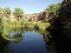 A wide canyon has a deep guelta at its end and creates a mini oasis for life in the desert; south of In Salah