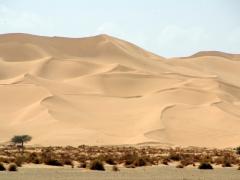 Massive sand dunes near Arak