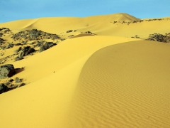 As soon as we discovered these pristine dunes, we just knew we had to climb them; Tiguelguemine