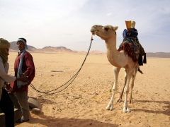 Tuaregs leading their camel to a well for water; Tamgs Kis