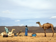 Tuaregs stop at a well to give their animals some water; Tamgs Kis