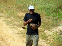 A Cameroonian man carries a pangolin home for dinner