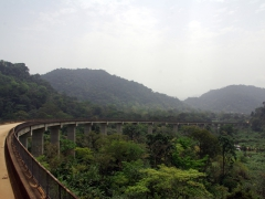 A majestic bridge spans a huge section of the Cameroon forest; enroute to Kumba