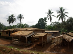 Typical Cameroon village; outskirts of Yaounde