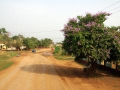 Road to Kumba
