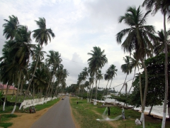 The pretty drive into Kribi