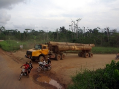 A logging truck emerges from a dirt road; Kribi