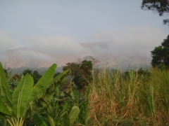 Cloud covered Mt Cameroon beckons us to climb it