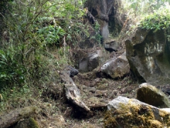 We had to contend with rocky boulders on our trek up Mt Cameroon