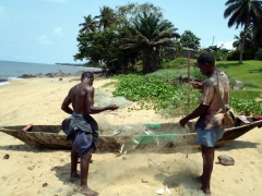 Kribi fishermen hauling in their catch of the day