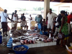 Kribi fish market is booming on Wednesdays and Saturdays