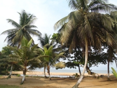The lovely view from our campground at Auberge Tara Plage; Kribi