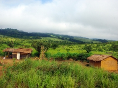 Traditional Congolese dwellings