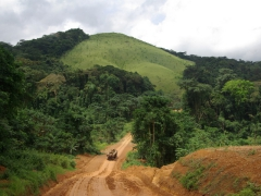 Whenever we think of Congo, an image of a logging truck and phenomenally beautiful scenery comes to mind