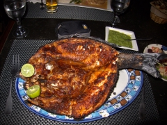 If in Djibouti, you must get the poisson yemenite (oven-baked fish split down the middle), one of their specialties