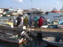 Locals gather by the waterfront to select the freshest seafood