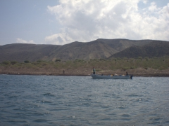 Fishermen in the Gulf of Tadjoura hauling up a bounty (they offered us massive lobsters for a pittance)