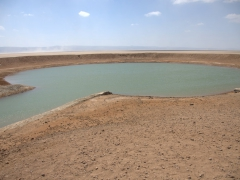 An oasis in the middle of the Grand Barra Desert (used by nearby villagers as a source of water)