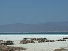 Lac Assal is a crater lake and the 3rd saltiest lake in the world (after the Dead Sea and Sea of Galilee)