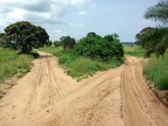Dirt road leading to Democratic Republic of Congo's interior