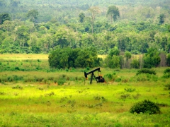 An oil donkey hard at work near Yema