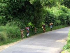 Congolese women are hard workers, carrying heavy loads to and from the field as well as preparing/cooking meals at home