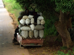 Vehicles in DRC are often seen loaded to the brim!