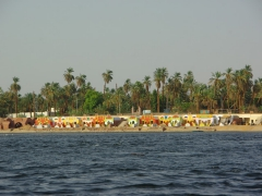 The colorful Nile riverbank near Aswan