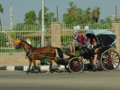 Matt, Nancy, Mel, Katherine and Kendra hop in a horse carriage ride for E₤10; Luxor