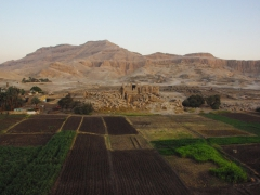 Fertile farmland on the outskirts of the Valley of the Kings