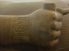 Detail of the fist of a giant, reclining limestone statue of Ramses II at the open air museum of Memphis