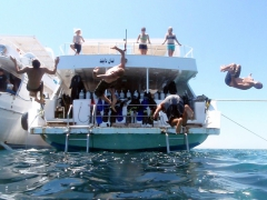 The boys putting on a lunch time show (Luke, Matt, Funny Divers guy, and Robby) perform back flips off the dive boat; Hurgada