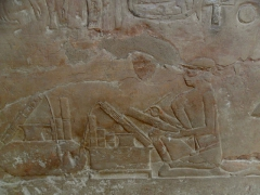 A scribe hard at work depicted on a wall of a tomb in Saqqara