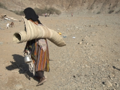 An Afar woman carries a ground mat and a tea kettle, two essential items for the Afar tribe
