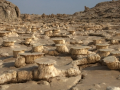 Fantastic mushroom formations at Dallol