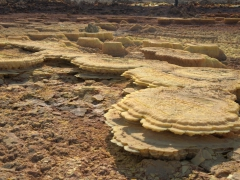 Evaporated salt deposits; Dallol Volcano